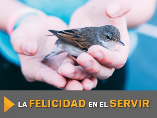 La_felicidad_en_el_servir_2.jpg